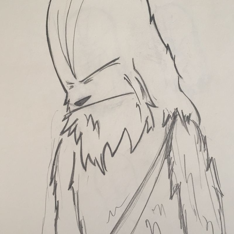 Wookiee Draws